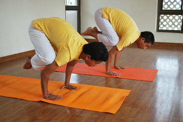 sivananda-yoga-balancing-postures-workshop