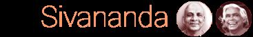 Sivananda Yoga Vedanta Nataraja Centre, Kailash Colony Logo