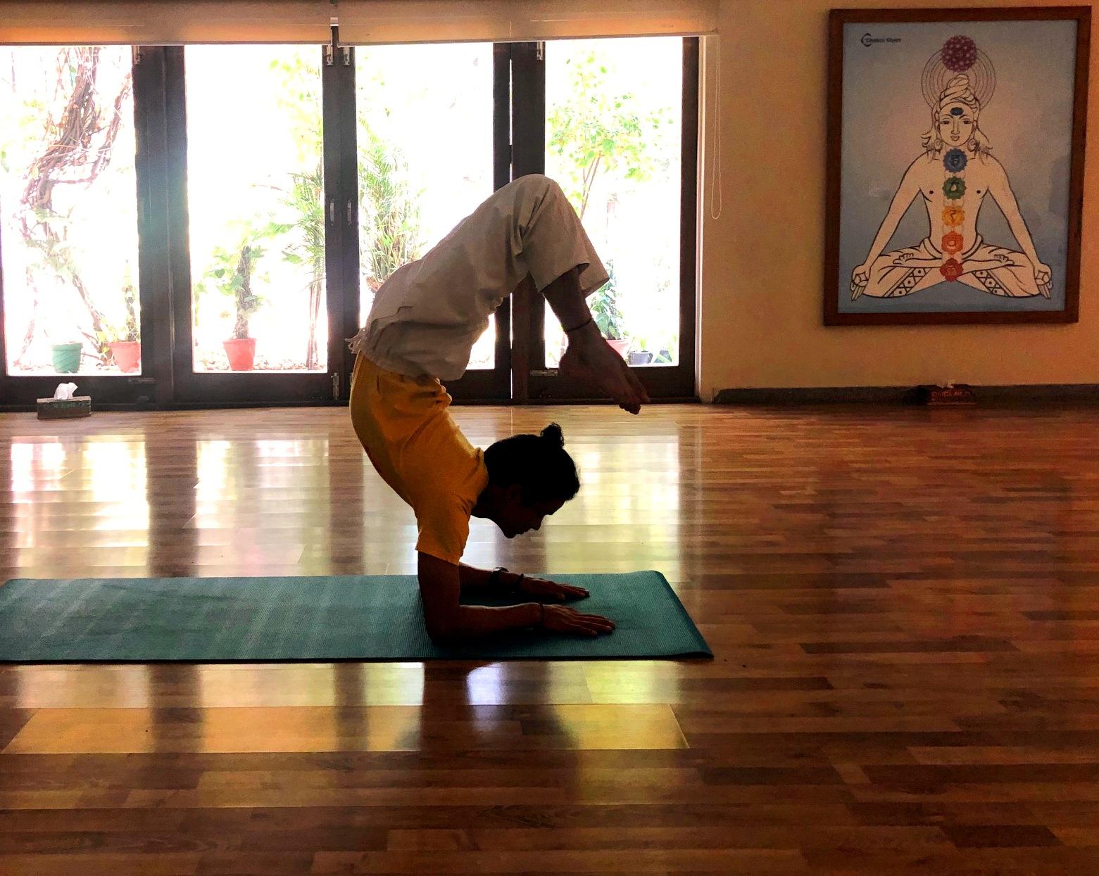 sivananda-delhi-advanced-yoga-course