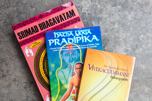 sivananda-madurai-sadhana-intensive-curriculum