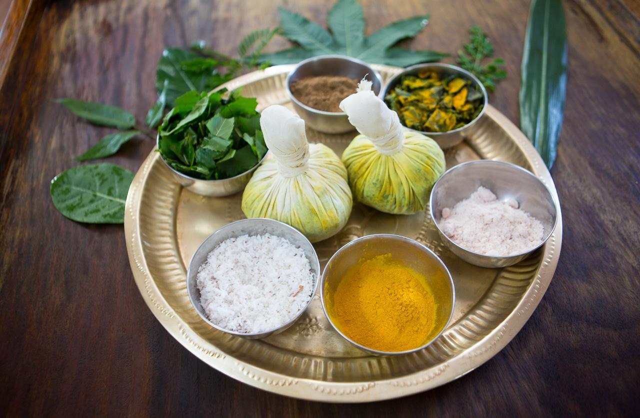 sivananda-madurai-panchakarma-detoxification-programme-overview-1
